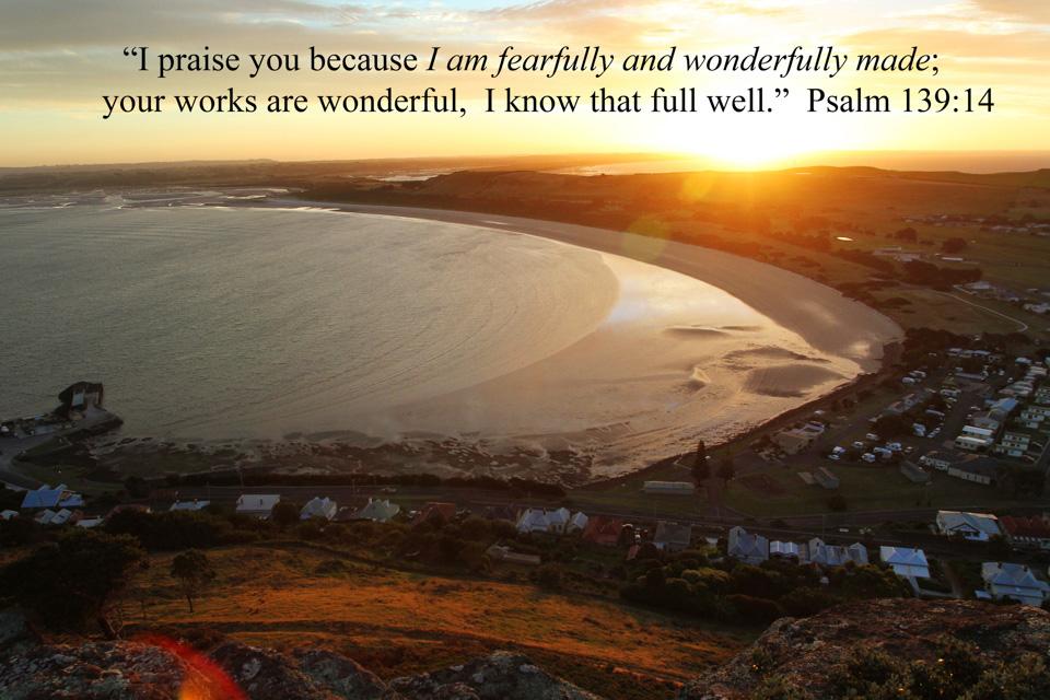 Psalm-139-14c