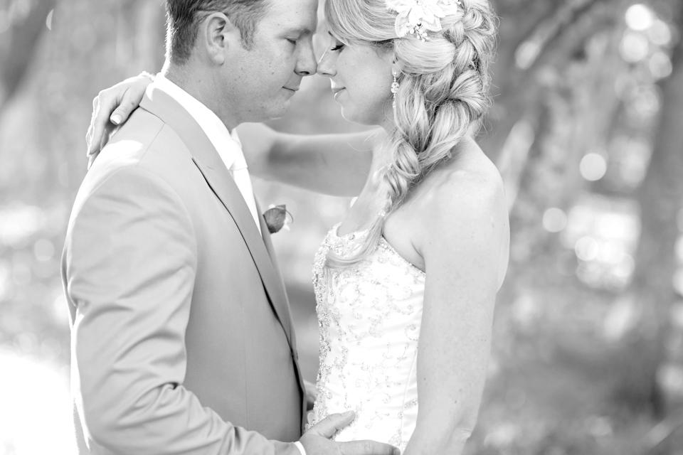 Weddings 14 210