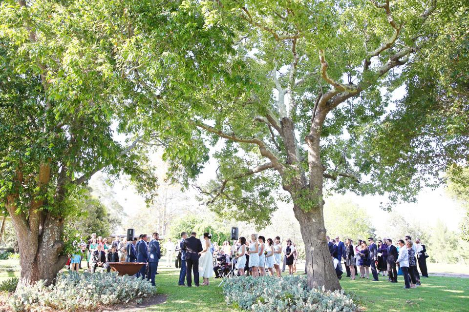 Weddings 14 012
